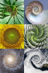 spiral examples
