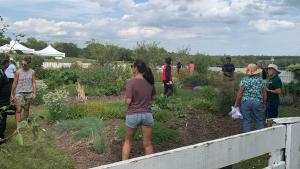 Belle Grove Teaching Garden